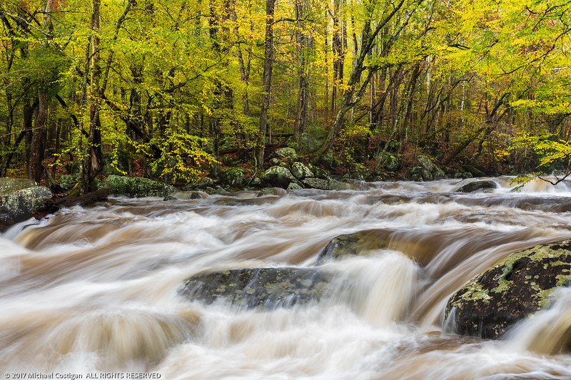 Little Pigeon River after Heavy Rain