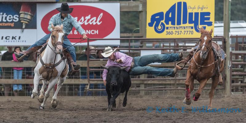 Steer Wrestling - 1