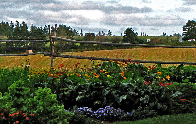 This colorful garden adorns the Anne of Green Gables homestead in Prince Edward Island.