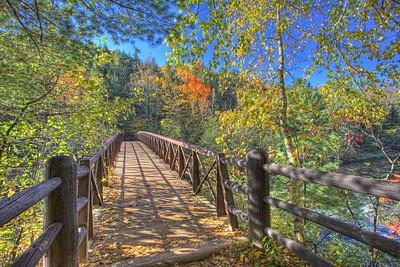 Bad River Footbridge 4