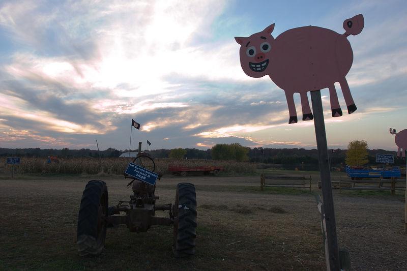 Cox Farms, Centreville, Virginia