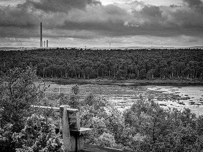 Sudbury's INCO scorched the earth in past decades and it takes a long time to recover!