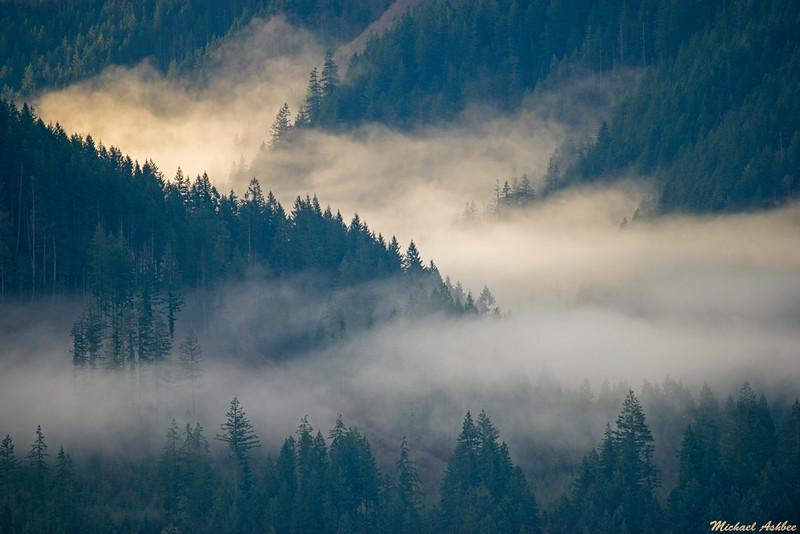 Misty morning Valley