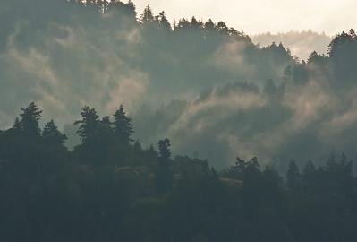 Morning mist in the Sooke Hills