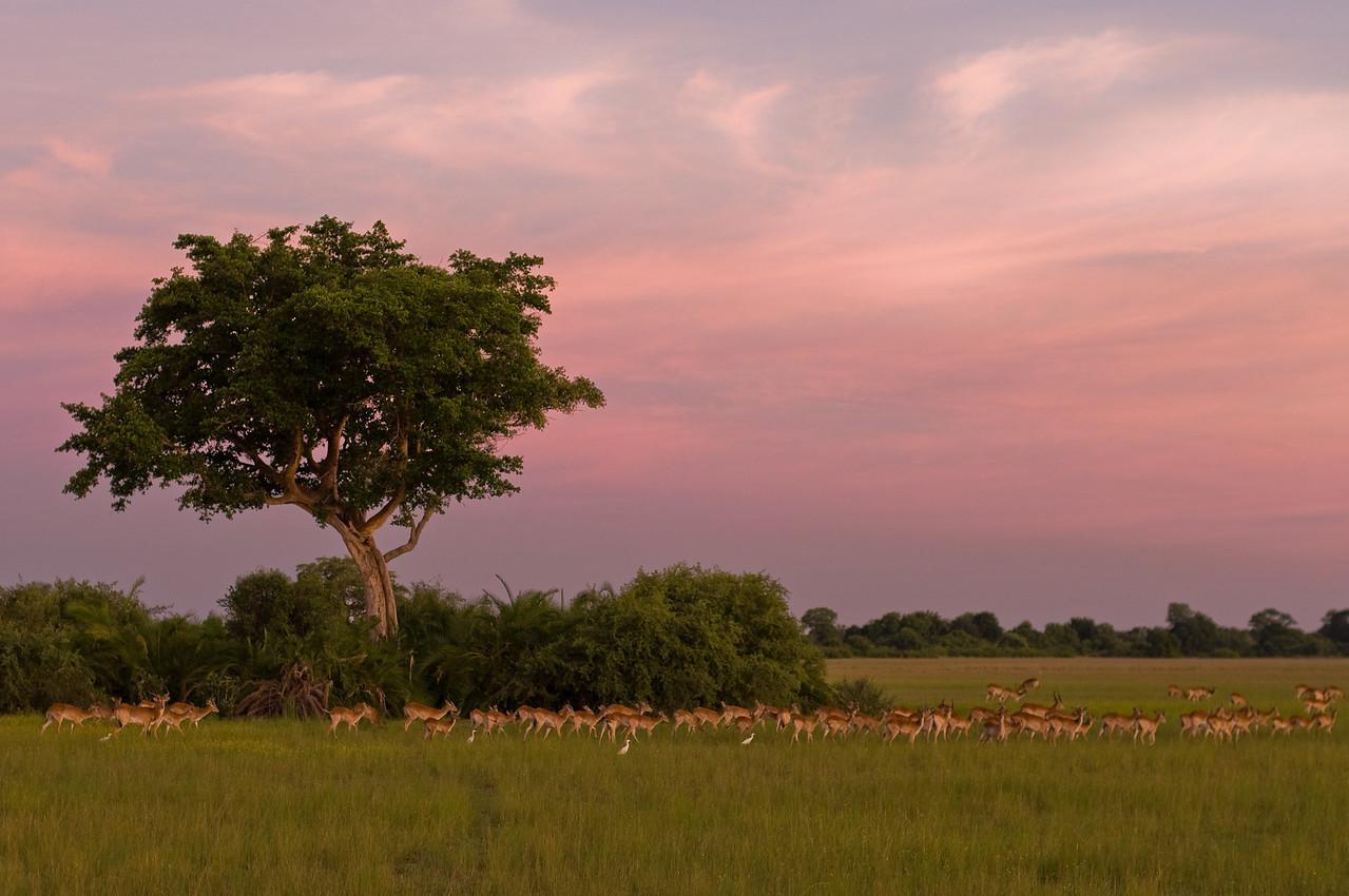 First sundown at Kwetsani - 30 December 2008