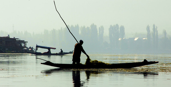 Morning hour at Dal Lake