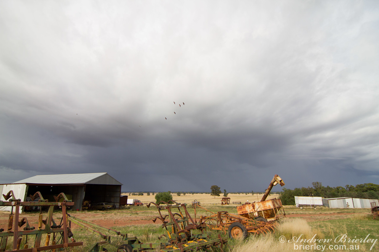 Coolamon Farm - Old Cars, Sheds and Farm Equipment