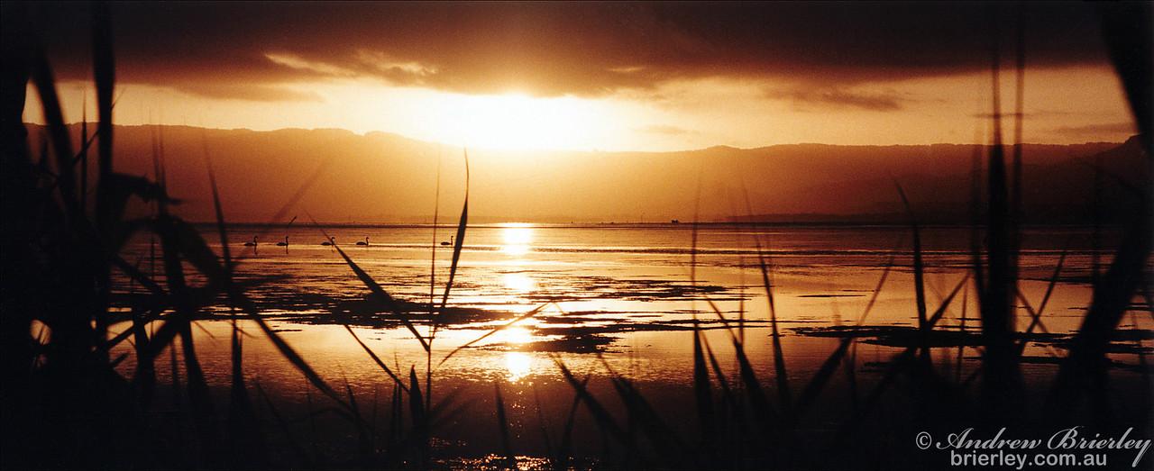 Lake Illawarra from Primbie