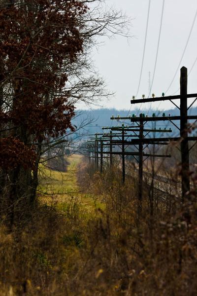Telegraph poles - Somewhere in Kentucky