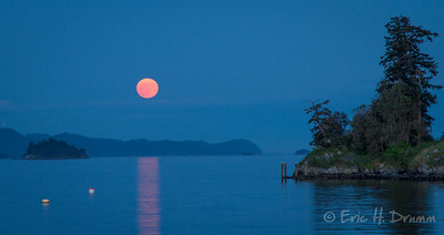 Supermoon over Ganges Harbour II, Salt Spring island, British Columbia
