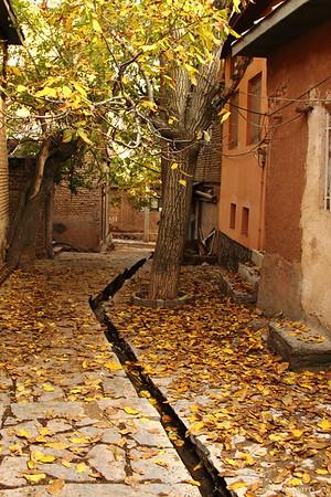 """Village Fall"""