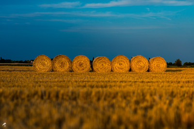 Summer Hay Stacks