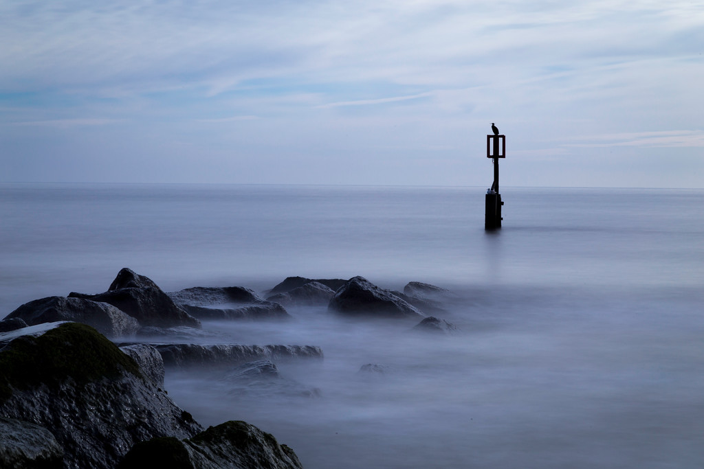 Resting Bird, long exposure seascape