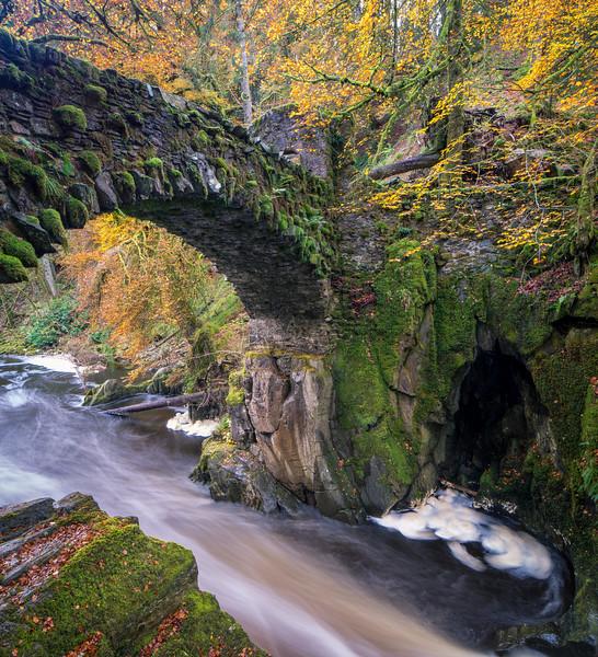 The Hermitage - The Bridge