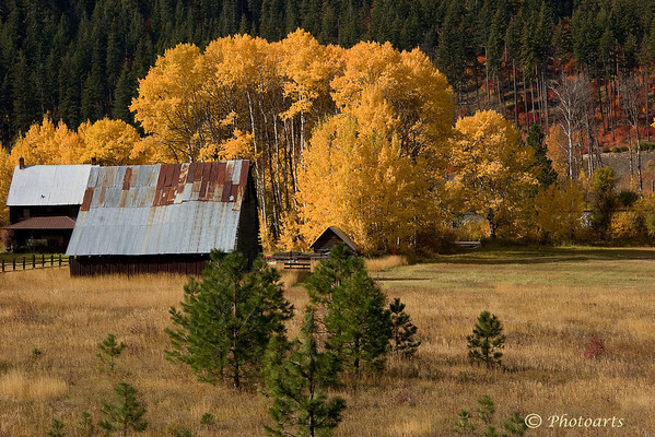 """""""Western Ranch"""""""