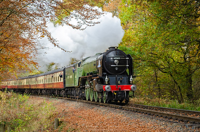 60163 Tornado at Trimpley