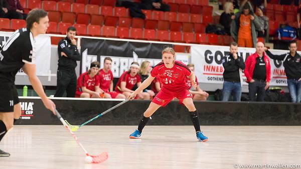 05/01/17 Gothia cup FBC Lerum MW0201