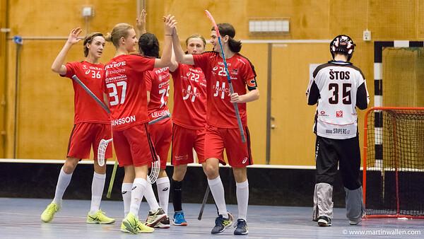 2017-01-07 Gothia Cup FBC Lerum match 5 MW2945