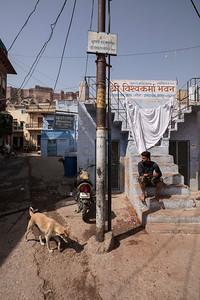 Jodhpur, Rajasthan, India