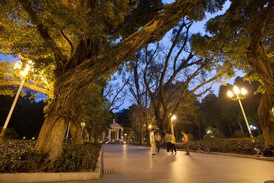 fc20110314guangzhou128413