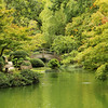 "Honorable Mention<br /> Advanced Landscape<br /> Annabel Thorpe <br /> Argyle HS<br /> Argyle, TX<br /> Instructor: Stacy Short<br /> ""Bridge at Japanese Gardens"""