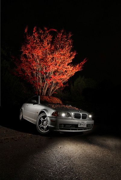 "Honorable Mention<br /> Advanced Advertising<br /> Timothy Whaling <br /> Westlake HS<br /> Austin, TX<br /> Instructor: Deanne Brown<br /> ""Blossoming BMW"""