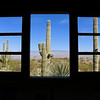 "Honorable Mention<br /> Advanced Landscape<br /> Madeline Day <br /> Lawrence Free State HS<br /> Lawrence, KS<br /> Instructor: Sarah Podrasky<br /> ""Cacti Though Windows"""