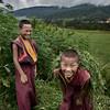 "Honorable Mention<br /> Advanced Informal-Environmental Portrait<br /> Singh Kabeer<br /> St. Mark's School Of Texas<br /> Dallas, TX<br /> Instructor: Scott Hunt<br /> ""Bhutanese Child Monks"""