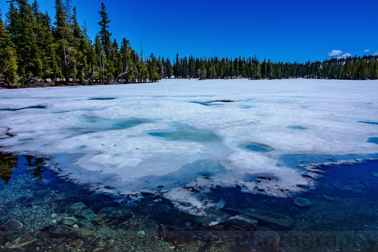 An Icy Goose Lake