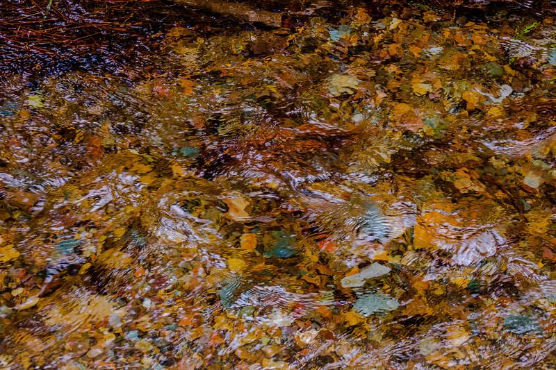 Snowmelt Feed Creek