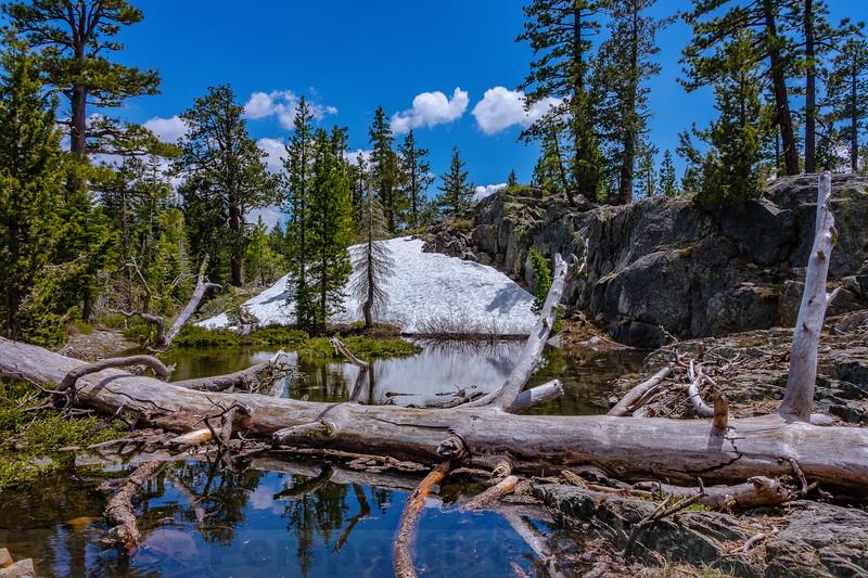 Snow Melt Pond along Frazier Falls Trail