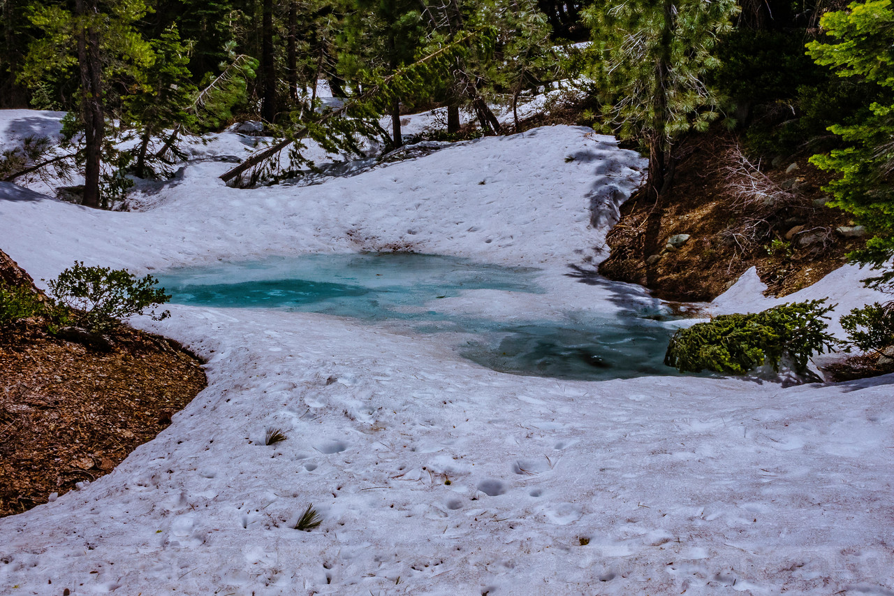 Pool of Meltwater