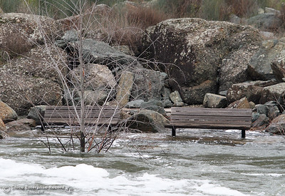 As water is released from Lake Oroville it flows down the Feather River raising the waters substantially, flooding these two benches near the Feather River Fish Hatchery January 31, 2017 in Oroville, California. (Emily Bertolino -- Enterprise-Record)