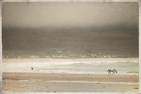 """Achill surfer and Connemara Pony"""