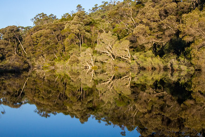 Donnelly River - D'Entrecasteaux National Park, Western Australia