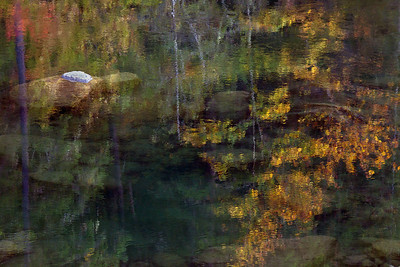 Umpqua Reflection_5204