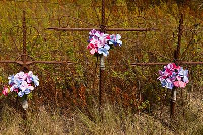 Roadside Memorial Lone Oak TX_3154
