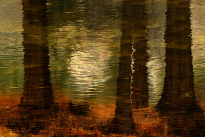 merced reflection