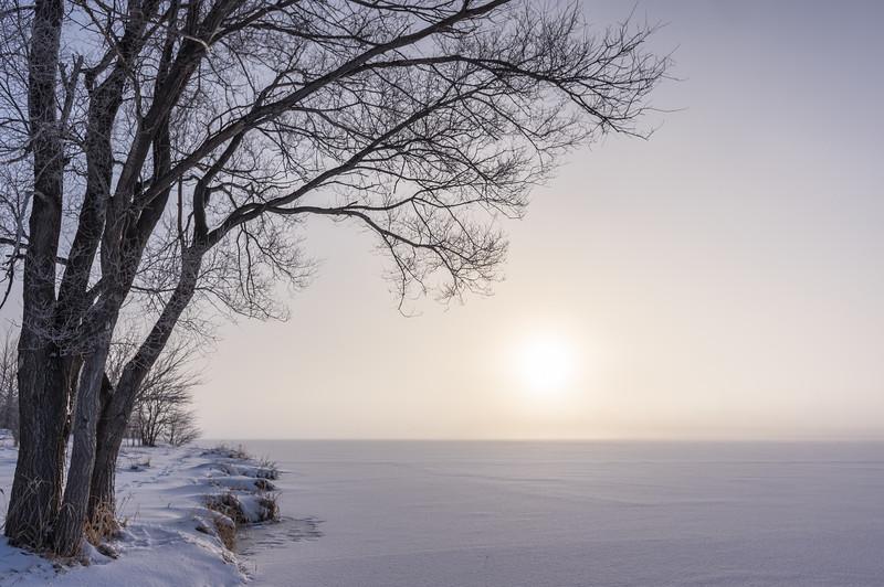 Winter Morning Mystique