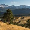 Longs Peak View