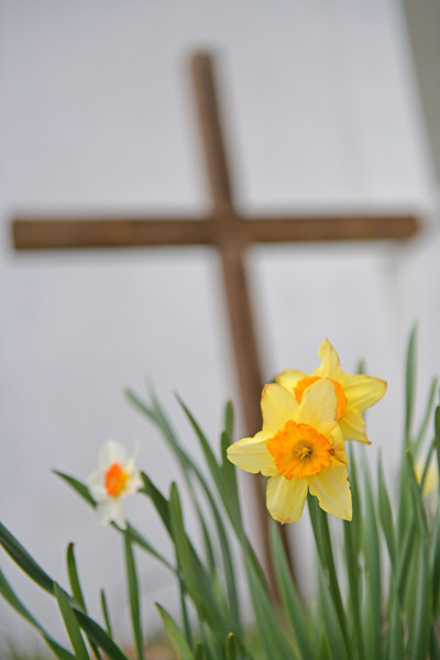 Spring flowers and the Cross