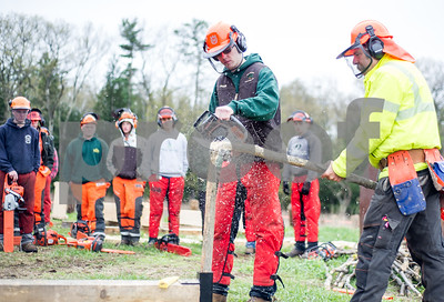Robert Layman / Staff Photo David Birdsall, right watches as Jacob Crocket, second year student at Stafford Technical Center, completes the final cut during a spring pole challenge at the New England Wood Training's Game of Logging Competition at the beginning of May at Gagnon Lumber in Pittsford. See the full coverage on the People & Places page.