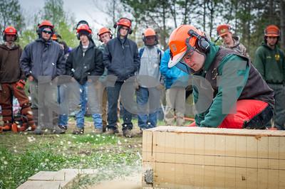 Game of Logging