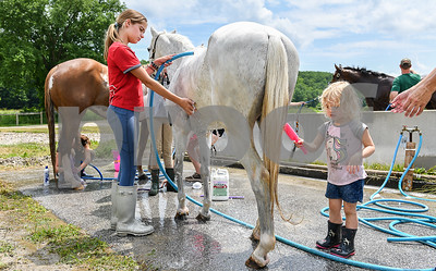 """Avery Sullivan, 2, of Harrison, NY, works with Ruby Olszewski, 11, left, to clean and cool off her horse """"Raspberry Ice"""" during the opening day of the Vermont Summer Festival in East Dorset Tuesday afternoon.  The young Sullivan will compete in the Lead Line class, which is the introductory class for beginning horse competitors. (Robert Layman / Staff Photo)"""