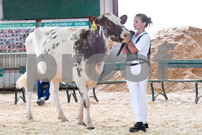 Jaymie Landon, 11, of West Pawlet, stands with her milking shorthorn cow as its judged during a showing at the Vermont State Fair Friday morning. (Robert Layman / Staff Photo)