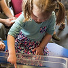 Lylah Murphy, 2, of Saugus reaches in and touches a sea star when the New England Aquarium came to the Saugus Public Library on Thursday.