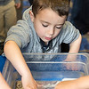 Nathaniel Sloane, 4, of Wakefield reaches in and touches a sea star when the New England Aquarium came to the Saugus Public Library on Thursday.