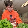 Jack Cuddy, 9, crabs freshly harvested veggies from the garden at Summer Street School to make a salad.