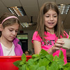 Tess Lanca, 9, left, and Mallory DiSilvio select freshly picked greens from the Summer Street School garden to add to their salads.