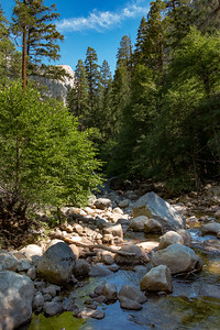 Tenaya Canyon Creek